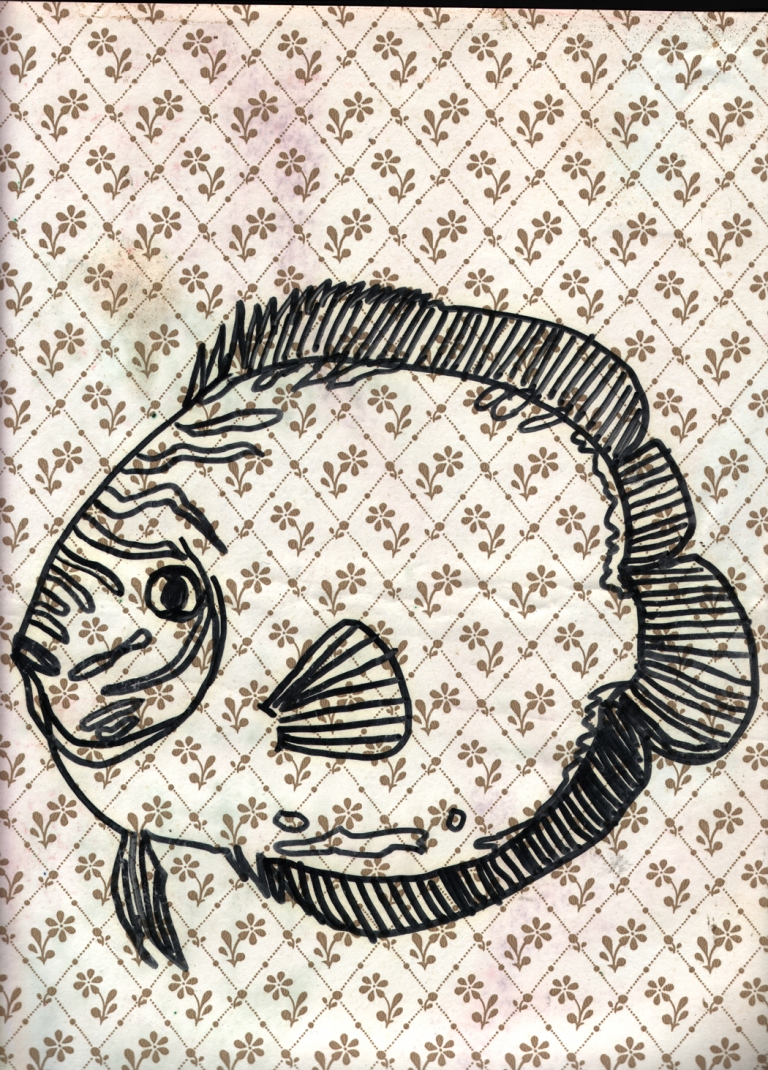 fish wallpaper 2a