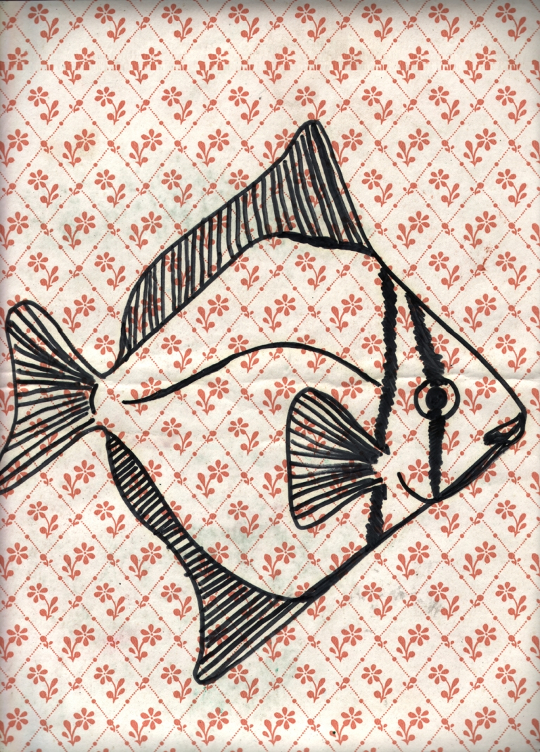 fish wallpaper 3a