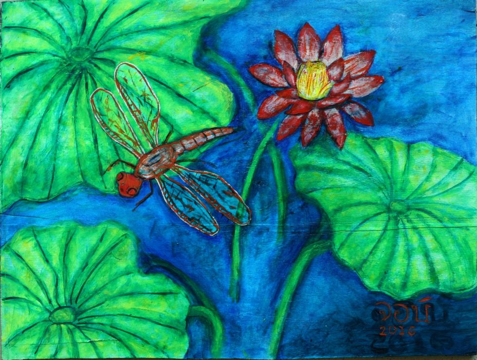dragonflylotus